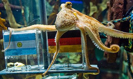 Psychic octopus