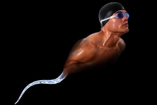 sperm swimmer